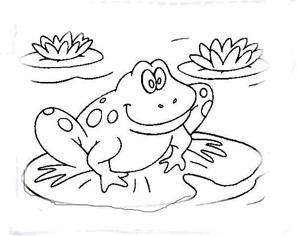 Frog Coloring Book Coloring Coloring Pages